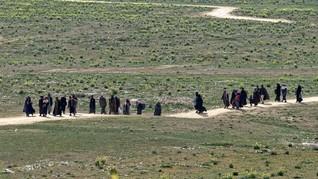 Turki Usir 5 Simpatisan ISIS Asal Jerman
