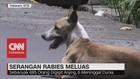 Serangan Rabies Meluas