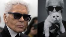 Kucing Choupette Dikabarkan Bakal Warisi Harta Karl Lagerfeld