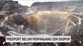 Freeport Belum Perpanjang Izin Ekspor