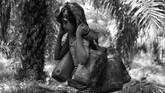 Saat ini, sebagian besar Orang Rimba masih tinggal nomaden dengan segala keterbatasan sumber daya dari satu kebun ke kebun lainnya. (ANTARA FOTO/Wahdi Septiawan)