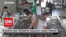 Kargo Mahal, Eksportir Tuna Aceh Terancam Gulung Tikar