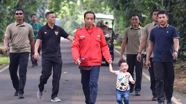 Sebelum Pidato, Jokowi Ajak Jan Ethes Main di Kebun Raya