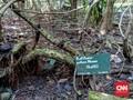 Peneliti Ingatkan Ancaman Nyata Kepunahan Rafflesia