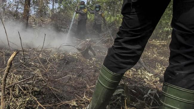 Wilayah terparah adalah Kabupaten Bengkalis dengan area yang terbakar mencapai 817 hektare. ANTARA FOTO/Rony Muharrman