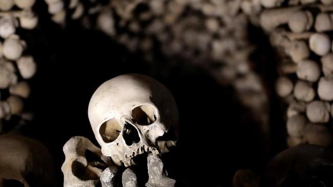 Para ahli di Ceko mempunyai tugas berat di awal tahun, yaitumembongkar empat piramida yang terdiri dari tulang-belulang lebih dari 40 ribu manusia yang sudah berabad-abad usianya.(REUTERS/David W Cerny)