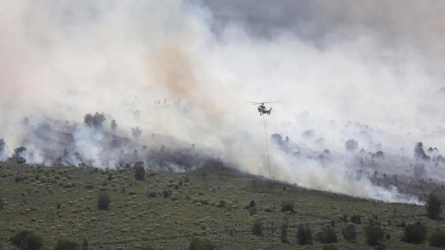 Kepala Badan Penanggulangan Bencana Daerah (BPBD) Riau, Edwar Sanger mengatakan jumlah lahan yang terbakar bertambah lebih dari 150 hektare dalam kurun waktu kurang dari 48 jam terakhir. ANTARA FOTO/Aswaddy Hamid