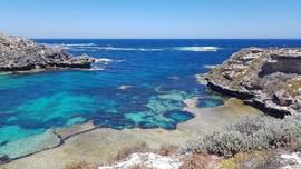 Rottnest Island, Destinasi Wisata Bahari di Australia Barat