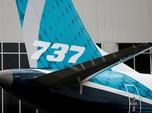 China Minta Maskapai Tak Pakai Boeing 737 MAX 8