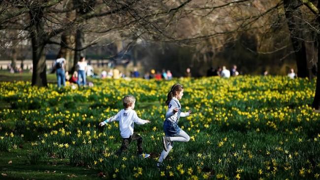 "Anak-anak berlarian dengan riang di hamparan lahan hijau Taman St James, London, Inggris. Taman St James memiliki danau dengan ""dua pulau"" yakni Pulau Barat dan Pulau Bebek. Kawanan Burung Pelikan menjadikan taman ini sebagai habitatnya, setelah dihibahkan oleh Rusia pada tahun 1664. (REUTERS/Henry Nicholls)"