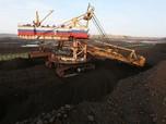 Pemerintah Proyeksi Harga Batu Bara Akhir 2020 US$ 59-61