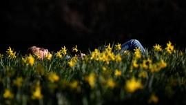 FOTO: Hangat Musim Semi di Taman St James