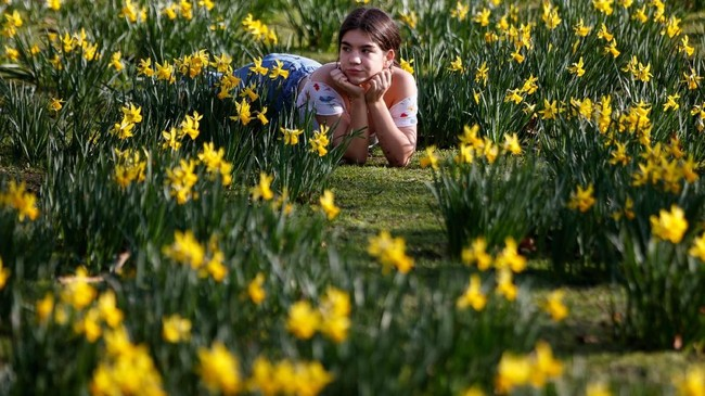 Taman St James berlokasi di kawasan Westminster. Luasnya mencapai 23 hektare. (Photo by Tolga Akmen / AFP)