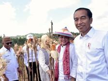 Siap-Siap! Jokowi akan Umumkan Lokasi Pasti Ibu Kota Baru