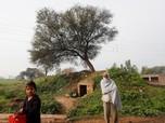 Tragis, 100 Bocah Tewas Akibat Wabah Radang Otak di India
