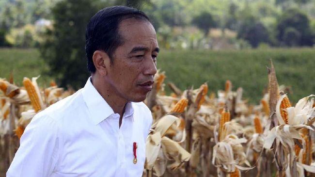 Survei PolMark: Elektabilitas 40 Persen, Jokowi Belum Aman