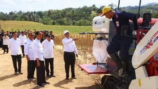 Bisa Ekspor, Jokowi Banggakan Petani Jagung Gorontalo