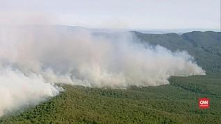VIDEO: Gelombang Panas Sebabkan Kebakaran Hutan di Australia