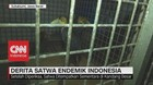 Derita Satwa Endemik Indonesia