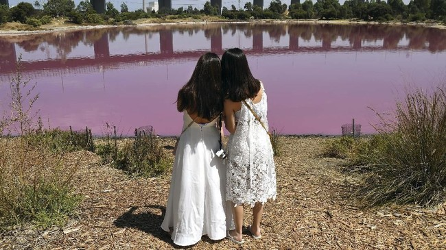 Selama masih berubah warna, Danau Westgate Park tetap dibuka untuk umum yang ingin menyaksikan fenomena alam tersebut. (AFP/William West)