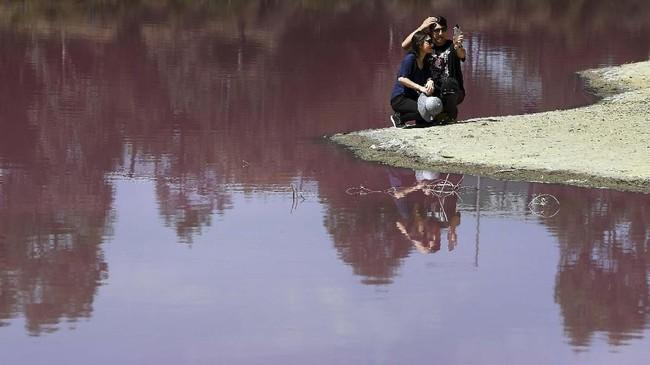Seorang pengunjung mengamati warna merah muda di Danau Westgate Park dari jarak dekat. (AFP/William West)