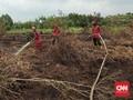 2,2 Juta Liter Air Dipakai untuk Water Bombing Karhutla Riau