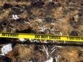 Kotak Hitam Ethiopian Airlines yang Jatuh Ditemukan
