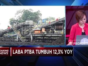 PTBA Cetak Pertumbuhan Laba 12,23%