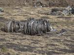 Cerita Tragis Detik-detik Jatuhnya Boeing 737 MAX 8 Ethiopian