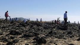 Sampel DNA WNI Korban Ethiopian Airlines Diserahkan