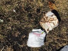 Ada 7 Staf WFP Korban Ethiopian Airlines, Harina Salah Satu