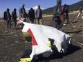 Kecelakaan di Ethiopia, China Hentikan Operasi Pesawat Boeing