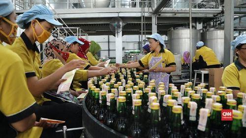 Video Anggur Orang Tua Warisan Fermentasi Untuk Kesehatan