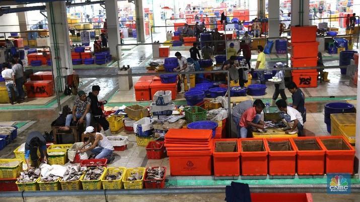 Bukan di Tokyo, Ini Wajah Pasar Ikan Higienis Muara Baru