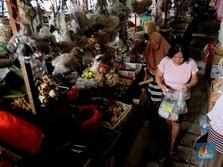 Inflasi RI Terendah Sepanjang Sejarah, Prestasi?