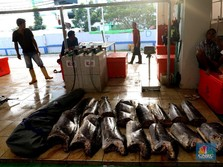 Startup eFhisery Pemberi Pakan Ikan Dari Bandung ke Barcelona