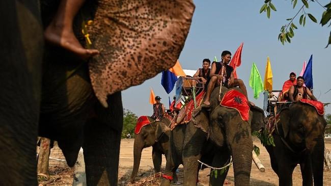 Festival gajah Buon Don adalah atraksi wisata utama di Veitnam, banyak wisatawan mancanegara yang sengaja datang ke Vietnam untuk menyaksikan pertunjukkan ini.