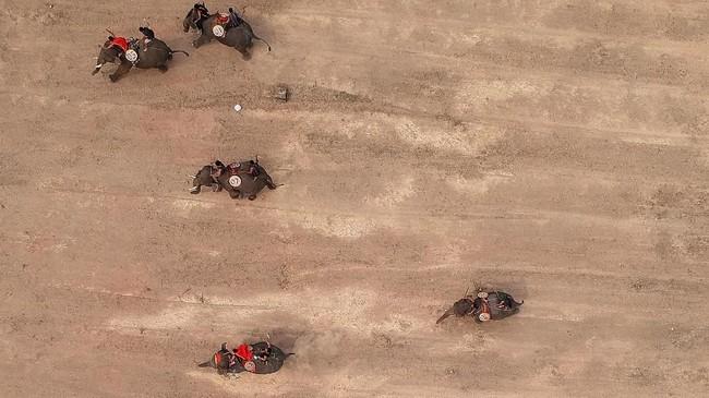 Bagi gajah yang memenangkan lomba, ada kompensasi yang didapat oleh para pemilik yakni uang sebesar US$130 (atau sekitar Rp1,8 juta).