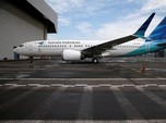 Penas, Perusahaan 'Mini' yang Akan Pimpin Holding BUMN Aviasi