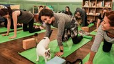 Tinggal di Brooklyn, datanglah ke Brooklyn Cat Cafe di hari Sabtu. Ini saatnya Caturday. (REUTERS/Jeenah Moon)