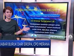 Kabar Buruk dari Eropa, CPO Merana