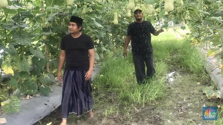 Sebagai petani yang berada di pinggiran ibu kota, Bagas mengaku sering mendapati persoalan dengan cuaca seperti banjir dan kekeringan.
