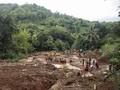 BNPB Sebut Akar Wangi di Hutan Gundul Solusi Atasi Longsor