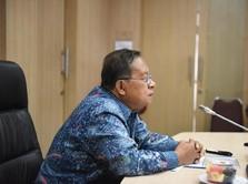 Tiket Turun Jadi Aduan ke Ombudsman, Simak Reaksi Darmin