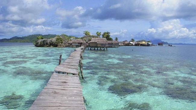 Karang di Kepulauan Togean Mulai 'Mekar'