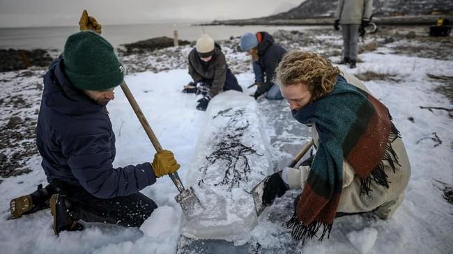 Keras, berat, dan mudah meleleh. Namun papan surfing yang dibentuk dari bongkahan es ini menarik perhatian sekelompok peselancar asal Negara Nordik.(Olivier MORIN / AFP)