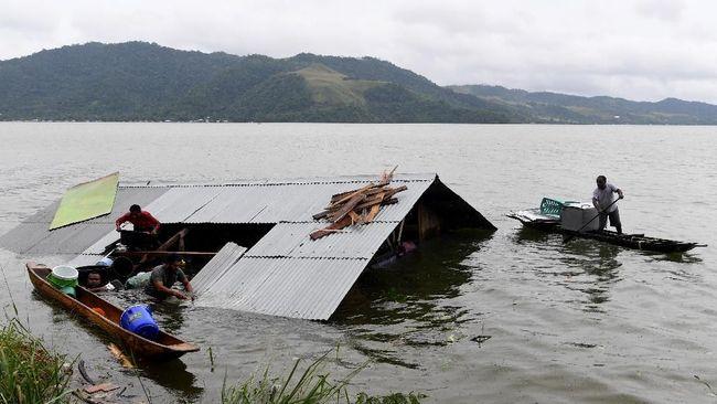 Peneliti Duga Hiu Pascabanjir Sentani Peliharaan Warga
