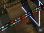 Sepekan Anjlok 75%, BEI Hentikan Perdagangan Saham MAMI