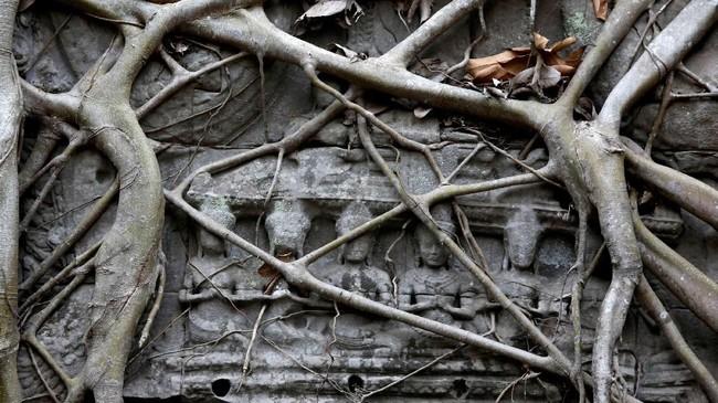 Candi yang terletak di Angkor, Provinsi Siem Reap, Kamboja ini sebenarnya bernama asli Rajawihara. (REUTERS/Samrang Pring)
