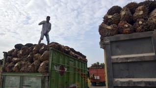 Jokowi Minta China Borong Sawit dan Buah dari Indonesia